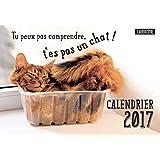 CALENDRIER 2017 PEUX PAS COMPRENDRE T ES PAS UN CHAT