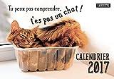 Tu peux pas comprendre, t'es pas un chat ! : Calendrier 2017