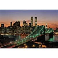 Comparador de precios New York, USA 1000 Piece Glow-in-the-Dark Puzzle by Tomax - precios baratos