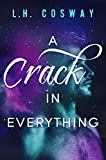 A Crack in Everything (Cracks Book 1)