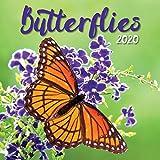 Turner Photo Butterflies 2020 Mini Wall Calendar (20998950054)