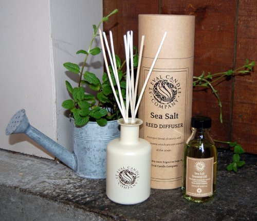 st-eval-scented-reed-diffuser-sea-salt-brand-new-diffuser-in-buff-drum-gift-box-with-cream-ceramic-b