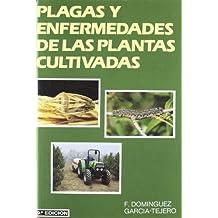 Plagas y enfermedades de las plantas cultivadas