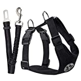 Dog Car Harnesses - Best Reviews Guide
