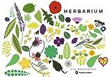 Image de Herbarium