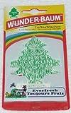HP Autozubehör 134218 Wunder-Baum Everfresh