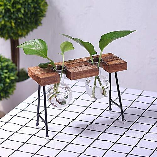 GRANDLIN Hydrokultur-Vasen mit Holzständer, Terrariengefäß, Blumenvasen, 3 Glasbecher, Blumenzwiebeln, Terrarien-Pflanzgefäß-Set mit rustikalem Holzständer, A2, 7 * 4.9 * 2.6inch (Home-chemie-set)