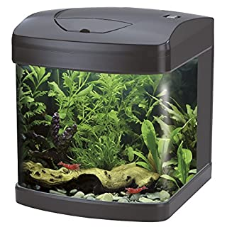 Wave A2001281 Xcube, 26 Liter, rot LED