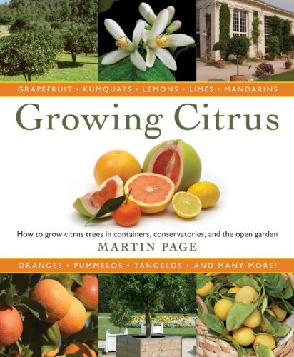 Growing Citrus: The Essential Gardener's Guide (English Edition)