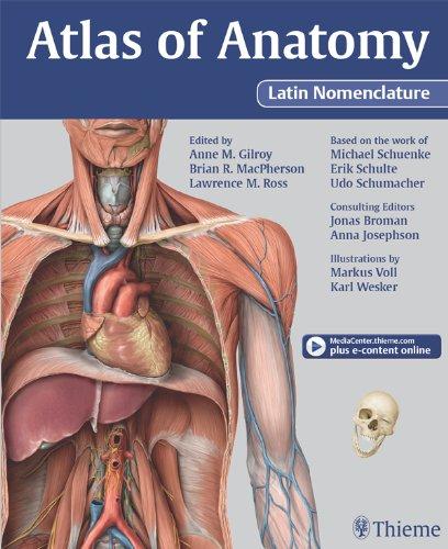 Atlas of Surgical Anatomy by Alain C. Masquelet - Dra Raquel Perez ...