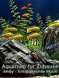 Aquarium für Zuhause - Amby - Entspannende Musik