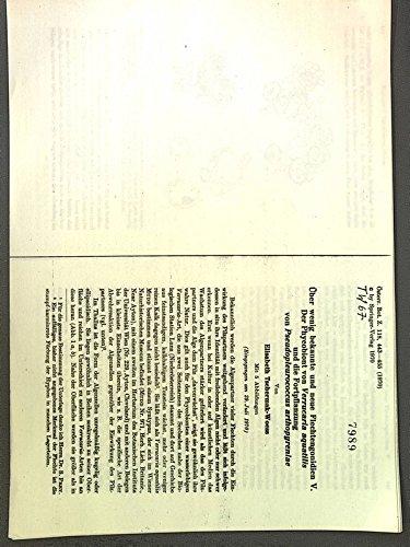 Ueber wenig bekannte und neue Flechtengonidien V. Der Phycobiont von Verrucaria aquatilis und die Fortpflanzung von Pseudopleurococcus arthopy-reniae. Sep.-Druck: Oesterr.Bot.Z. 118, 443-455.