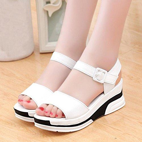 Amlaiworld Donna Sandali,Moda Scarpe basse di peep-toe sandali romani Bianco