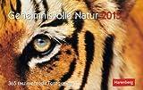 Geheimnisvolle Natur - Harenberg-Kalender 2015 - Premiumkalender - Aufstellkalender - Tagesabreißkalender - Tischkalender - 23 cm x 17 cm