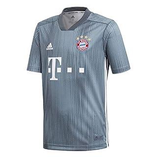 adidas Kinder 18/19 FC Bayern 3rd Trikot, raw Steel/Utility Blue/White, 152