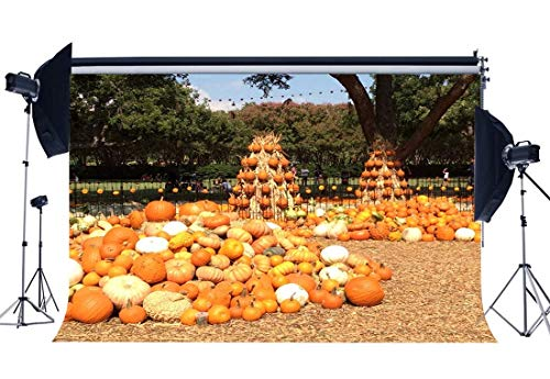 kerland Kulisse 5X3FT Vinyl Halloween Kürbisse Kulissen Natur Wald Bäume Stroh Herbst Gruß Ernte Fotografie Hintergrund für Happy Thanksgiving Day Fotostudio Requisiten QB59 ()