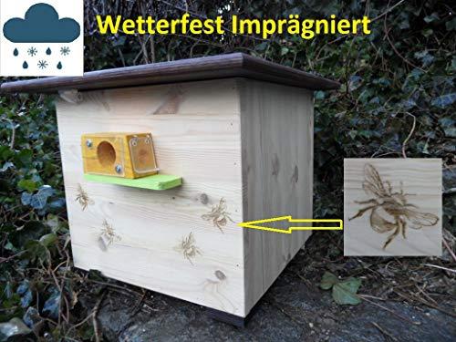 Arbrikadrex XXL Luxus Hummelkasten mit Wachsmottensperre, 2X Sichtfenster und Nistmaterial Imprägniert Wetterfest Bienenhaus Hummelhaus Nistkasten...