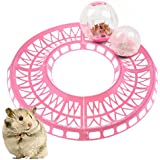 Hamster Exercise Loop Racetrack Running Track For Hamster Balls For Pet Safety - B07DWZ6FGP