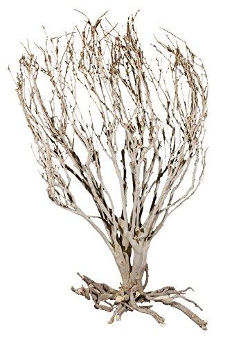 lucky-reptile-dsb-1-decoration-pour-terrarium-arbuste-de-la-savane