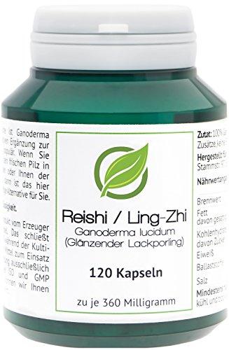 Reishi/Ling-Zhi (Ganoderma lucidum) - 120 Reishi-Kapseln in Aromaschutzdose - Bade-Öl Spray