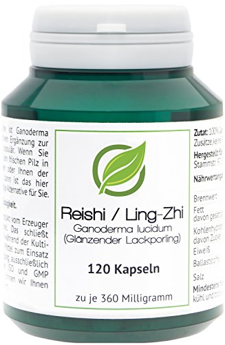 Reishi | Ling-Zhi (Ganoderma lucidum) - 120 Cápsulas en caja para preservar...