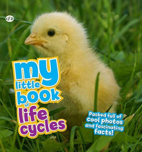 My Little Book Of Lifecycles by Camilla B??doy???re (2014-03-03)