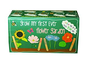 Grow My First Ever Flower Tray Seeds