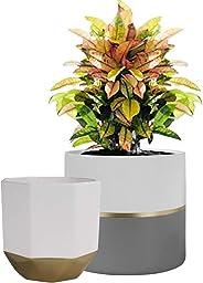 La Jolíe Muse Blumentöpfe Keramik 2er Set Weiße Sukkulente Kaktus Töpfe Pflanzenkübel