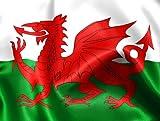 1,52 Meters X 0,91 Meters Salvietta con bandiera del Galles con occhielli, motivo: Dragone Rosso