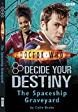 Doctor Who: The Spaceship Graveyard: Decide Your Destiny: Number 1: Decide Your Destiny No. 1
