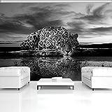 ForWall Fototapete Vlies Tapete Design Tapete Moderne Wanddeko Gratis Wandaufkleber Jaguar in schwarz und weiß V4 (254cm. x 184cm.) Photo Wallpaper Mural AMF218V4 Schwarz Weiss Gepard Katze Himmel Wolken Rohheit TAPETENKLEISTER INKLUSIV
