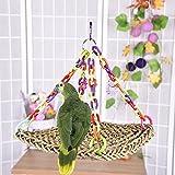 Bird Swing Toy Parrot Swing Straw trenzado para la coordinación de las aves y Balance Trapeze