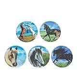Ergobag Accessoires Klettbilder-Set 5-tlg Kletties Pferde Pferde