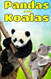 Pandas and Koalas: Facts, Information and Beautiful Pictures about Pandas and Koalas: Volume 2 (Animal Books for Children)