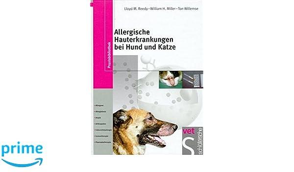 Allergische Hauterkrankungen Bei Hund Und Katze Allergene