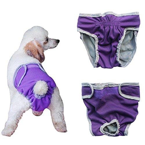Septven Weiblich Hunde Schutzhose Haustier Unterhose Unterwäsche Welpenhose Hose Windel Hygieneunterhose Komfortabel, Atmungsaktiv (M, Lila)
