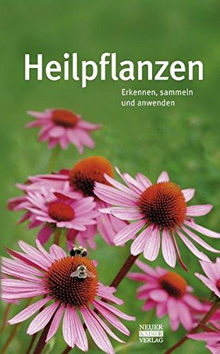 Heilpflanzen: Erkennen, sammeln und anwenden