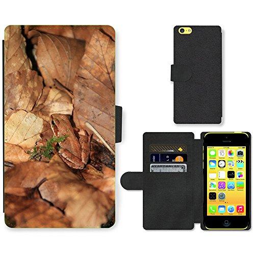Just Mobile pour Hot Style Téléphone portable étui portefeuille en cuir PU avec fente pour carte//m00139679Arborée Grenouille Vert Hyloscirtus feuilles//Apple iPhone 5C