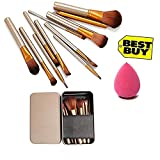 Generic Makeup Brushes (Eyebrow,Foundation Powder,Eyeliner,Lip Brushes,1 Puff), Set of 12