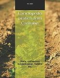 Enciclopedia pratica della Cannabis:...