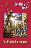 Die drei ??? Kids 37 - Der Fluch der Indianer: Erzählt von Ben Nevis - Ben Nevis