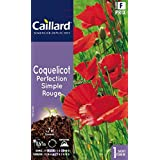 Caillard PFCA20310 Graines de Coquelicot Perfection Simple Rouge