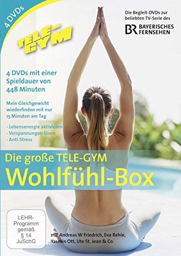Tele-Gym - Die große TELE-GYM Wohlfühl-Box [4 DVDs] -