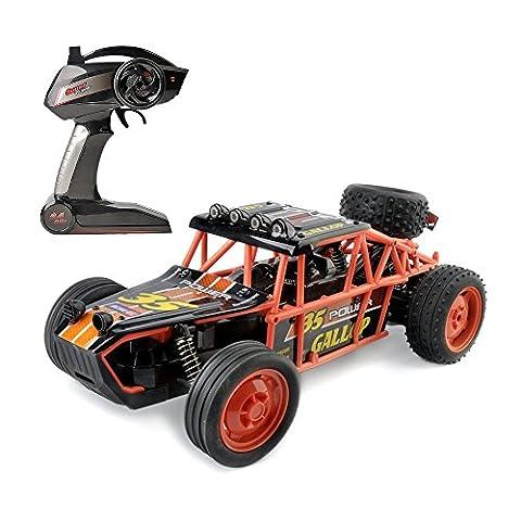 Gizmovine Remote Control RC Racing car – High Speed Orange Buggy, 1/10 Scale – Fast, super control (Orange-013)