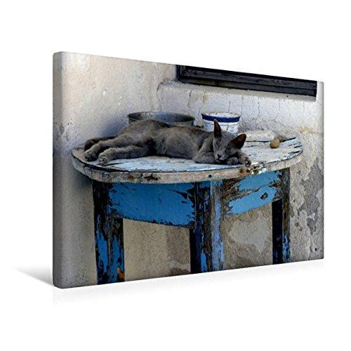 Premium Textil-Leinwand 45 cm x 30 cm quer, Ruhe und Gelassenheit | Wandbild, Bild auf Keilrahmen, Fertigbild auf echter Leinwand, Leinwanddruck: Katze auf Santorini (CALVENDO Glaube)