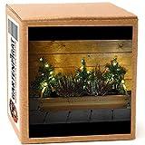 3x Mini-Weihnachtsbaum Tanne mit LED beleuchtet außen Deko Blumenkasten Weihnachten von Gartenpirat