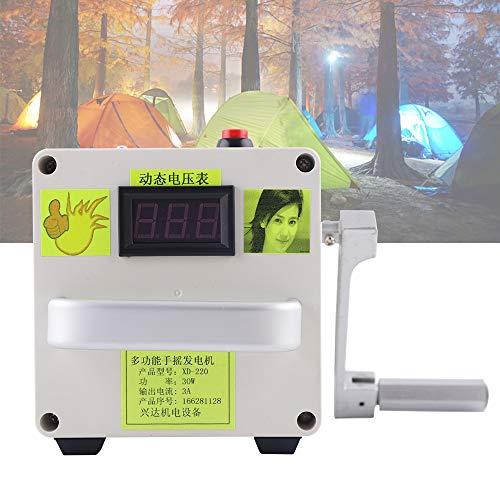 DiLiBee Kleine Handkurbel Generator New 220V Notladegerät Portable Power Supply (mit Lithium-Batterie) (Kleine Generator-batterie)