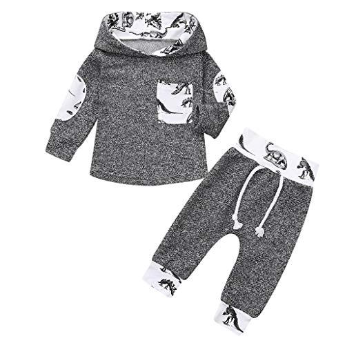 Sportanzug Freizeitanzug Säugling Baby Kleidung Set Jungen Mädchen Dinosaurier Print Hoodie Sweatshirt Pullover Tops + Hosen Outfits Set, Grau, 6-12 Monate