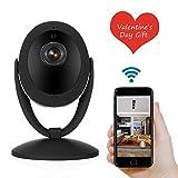 NEXGADGET Cámara de Seguridad Vigilancia 1080P HD WiFi Interior Audio Bidireccional Pan & Tilt Visión Nocturna Detección Movimiento (D93S)