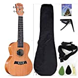 Concert Ukulele Solid Top Mahogany 23 Inch With Ukulele Accessories With Gig Bag,Strap,Nylon